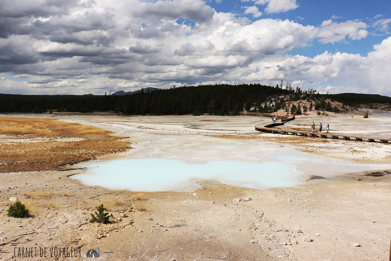 norris geyser basin 2